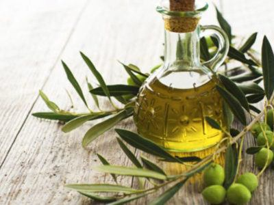 Corfu Olive Tours by The Governor